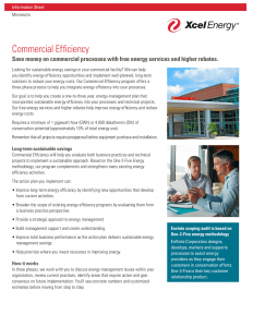 Xcel Energy Commercial Efficiency